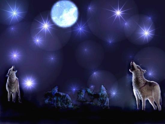 6edi1d8-cry-wolf.jpg